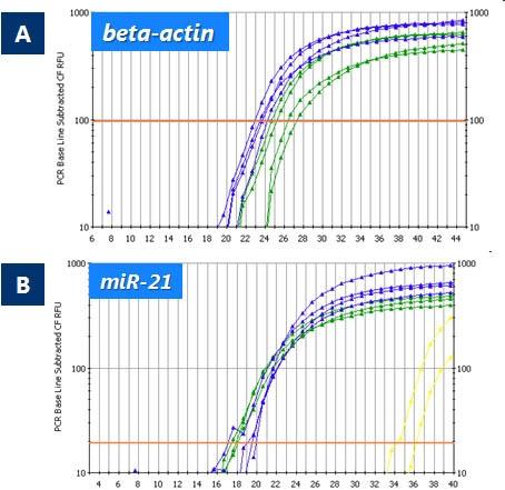 FFPE RNA Purification Kit Figure 3
