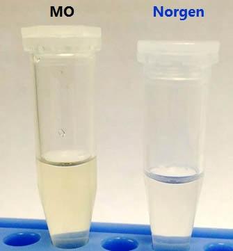 Soil DNA Isolation Kit Figure 1
