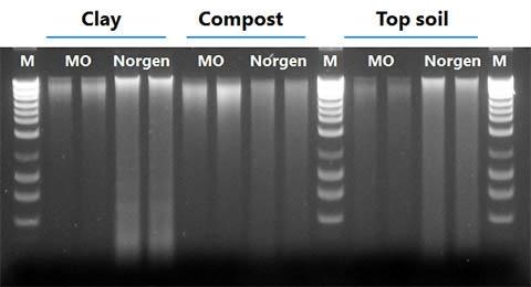 Soil DNA Isolation Kit Figure 3