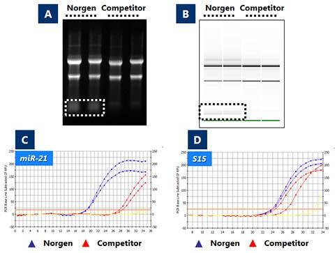 Dissertation work on protein purification?