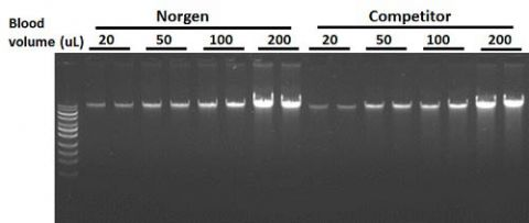Figure 1.  High Yields of DNA