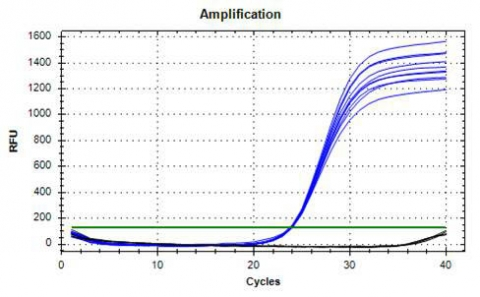 Figure 2. Real-time PCR Consistency from Saliva Samples.