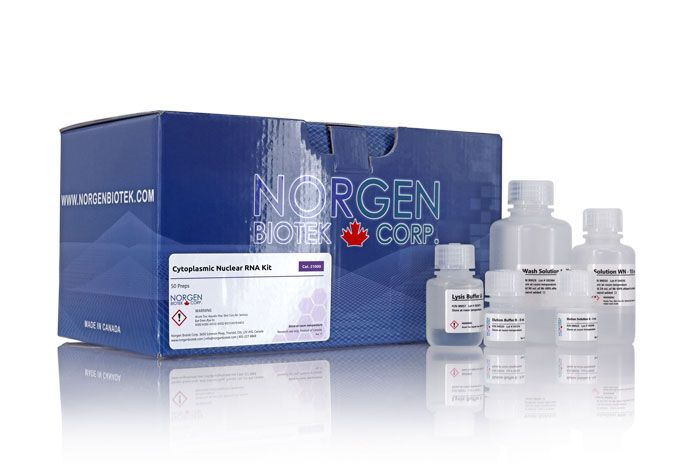 Cytoplasmic and Nuclear RNA Purification Kit